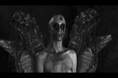 Behemoth - Messe Noire -  Live Satanist (2018) [DVD9]